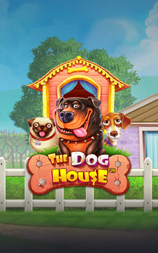 Revue Jeu The Dog House